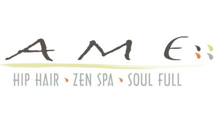 AME Logo copy